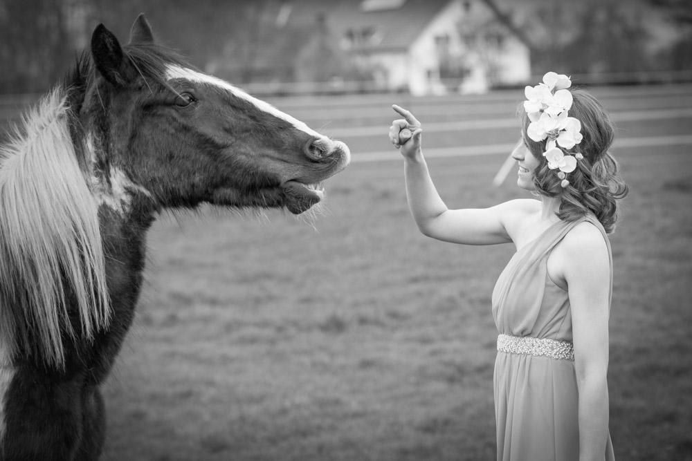 Pferdeshooting_Wiese